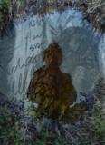 Penny Hallas film still