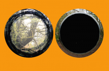 Binocular-TestBed2016reduced