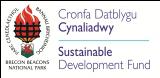 SDF Logo_CMYK (2)